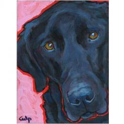 Black Labrador Close Up Print