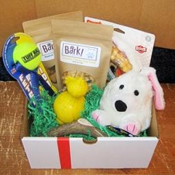 Easter Dog-Gone Goodie Gift Box