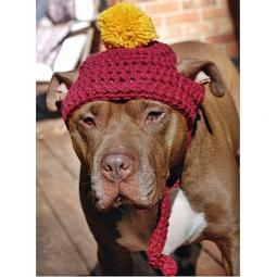 Maroon Crochet Hat with Gold Pom Pom