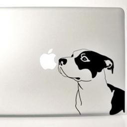 Black and Clear Pit Bull Large Decal