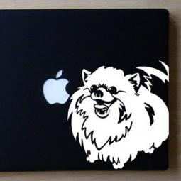 Pomeranian Large Decal