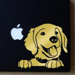 Golden Retriever Large Decal