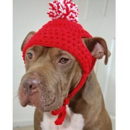 Red Crochet Hat with Red & White Pom Pom