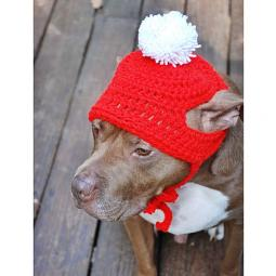 Red Crochet Hat with White Pom Pom