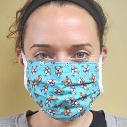 Smiling Teal Pit Bull Pleated Face Mask