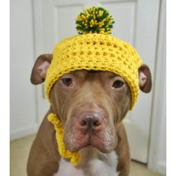Yellow Crochet Hat with Green & Yellow Pom Pom
