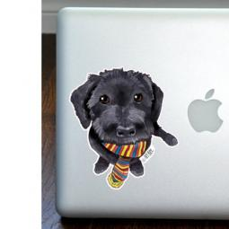 Yorkipoo Full Color Large Decal