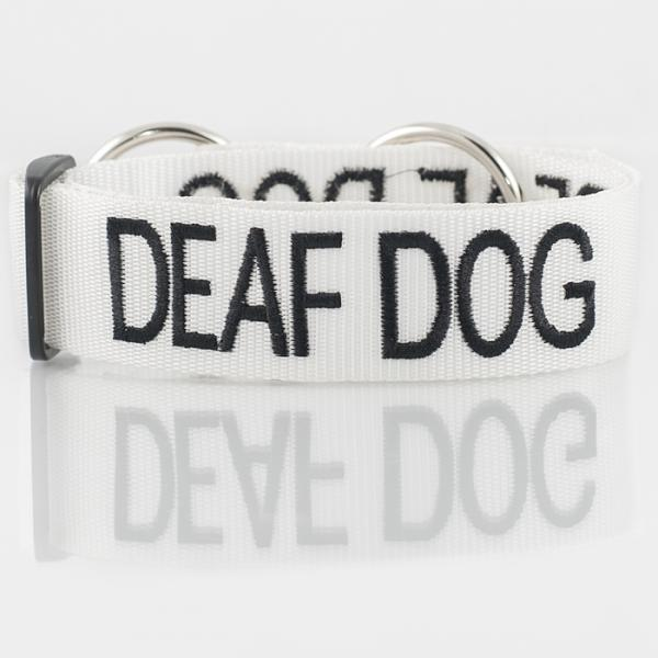 Deaf Dog Collar