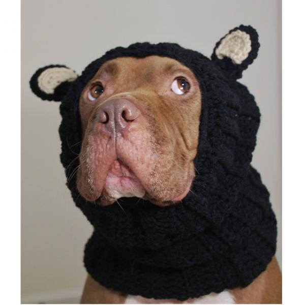 Black Bear Crochet Snood