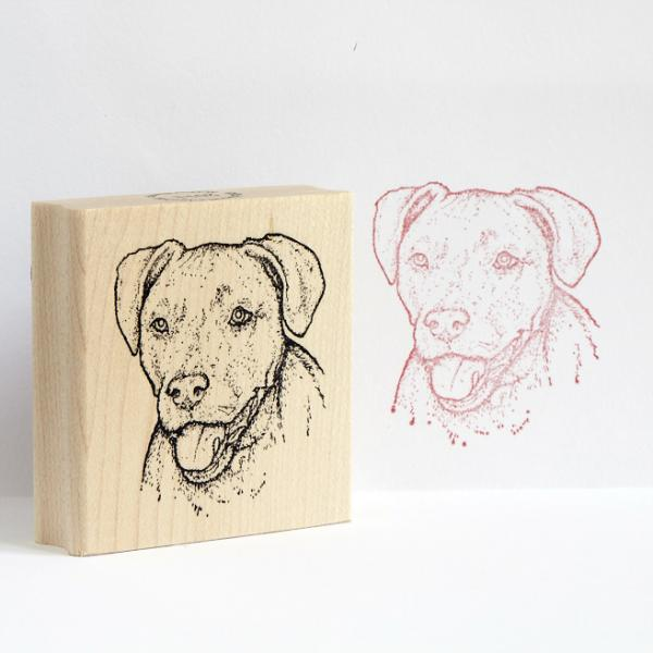 Set Of Three Rubber Stamps Dog Park Publishing