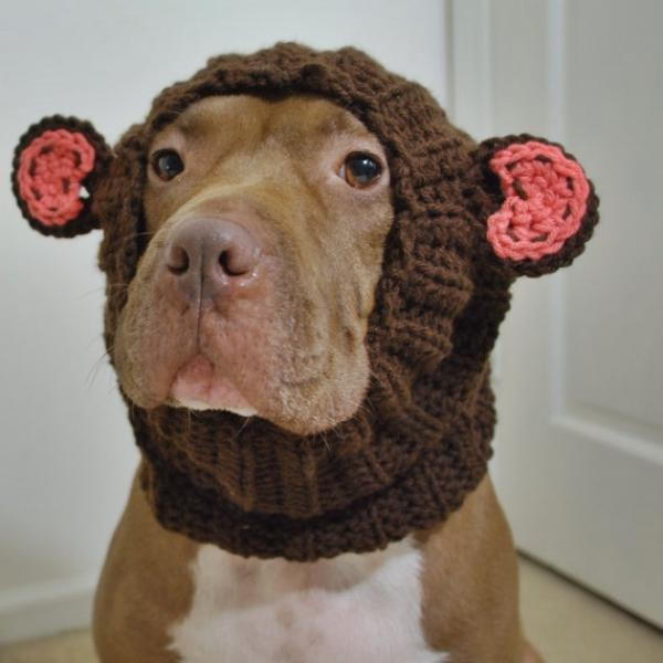 How To Make A Dog Snood
