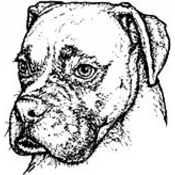 Riggley Detailed Rubber Stamp Dog Park Publishing