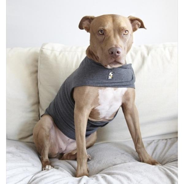 Xs Xxl Thundershirt For Dogs Multiple Colors Dog Park Publishing