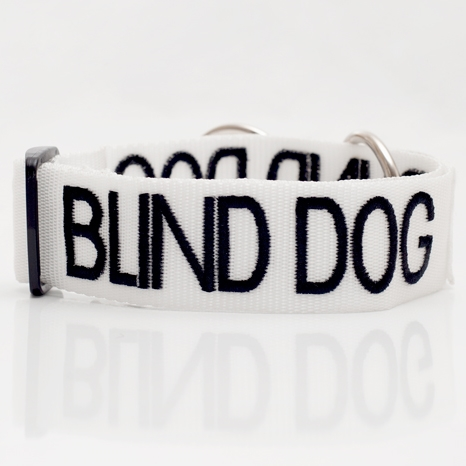 Blind Dog Collar