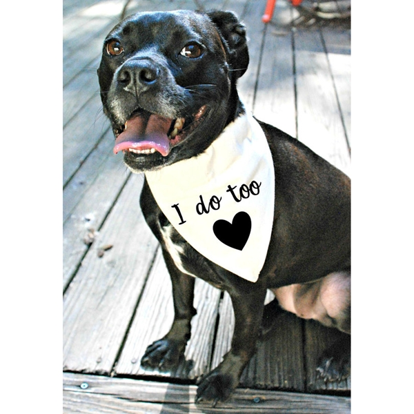 I Do Too Canvas Dog Bandana