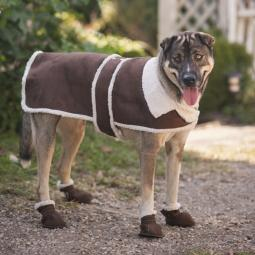 XXL Brown Shearling Dog Coat