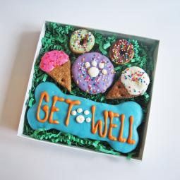 Get Well Dog Treat Gift Box